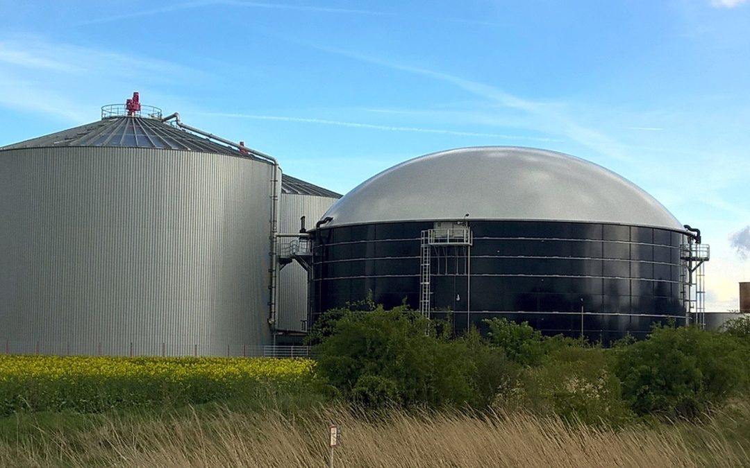 The renewable energy that can contribute most to the circular economy: biogas